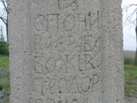 Wierzbica_114