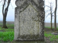 Wierzbica_126