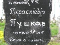 Wierzbica_053
