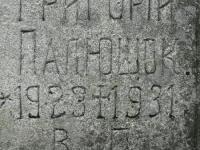 Wierzbica_269