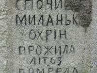Wierzbica_282