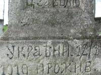 Wierzbica_613