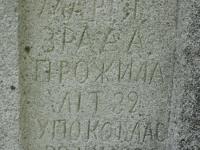 Wierzbica_744