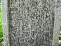 Wierzbica_805
