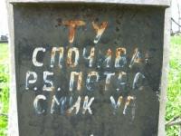 Wierzbica_817