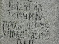Wierzbica_366