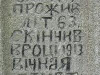 Wierzbica_480