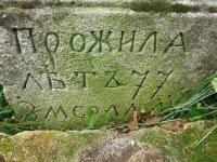 Oleszyce_076