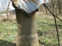 Surowica_051.jpg
