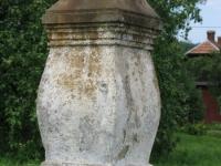 terstiana (110)