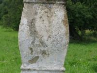 terstiana (113)