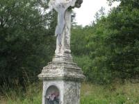 terstiana (119)