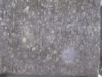 horodlo (227)