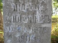 luzhkiv (102)