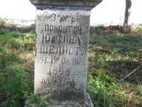 luzhkiv (139)