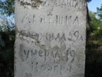 luzhkiv (150)