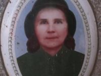 stepankovychi (39)