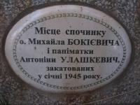 stepankovychi (40)