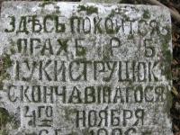 cholmshchyna_4636