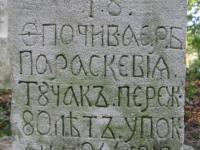 sukha_vola (379)