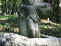 sukha_vola (416)