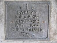 sukha_vola (428)