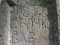 sukha_vola (449)