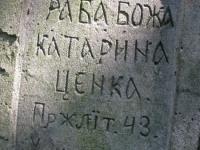 sukha_vola (481)