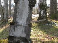 litovyshchi (16)