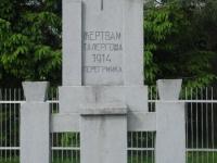 Perehrymka (15)