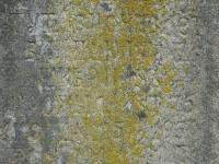 Bodaki (230)