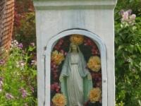 Gwozdzianka (126)