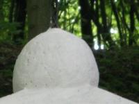 Gwozdzianka (4)
