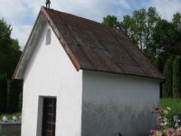 Gwozdzianka (91)