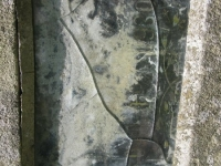 Macyna (91)