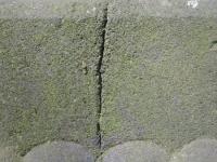 RopicaRuska (100)