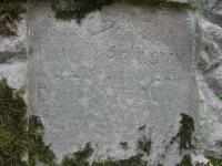 rychwald (104)