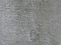 rychwald (108)