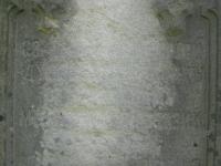 rychwald (113)
