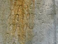 ZawadkaRym1 (12)