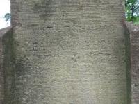 Ripnyk (146)