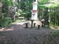 WolaJsienicka (2)
