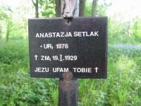 WolaCieklinska (76)