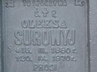 Hrushovychi_060