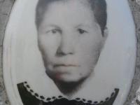 Hrushovychi_085