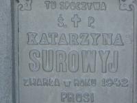 Hrushovychi_225