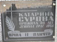 Hrushovychi_245