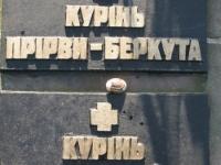 Hrushovychi_265