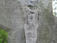 Regietów (106)