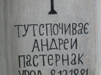 OPARIVKA (51)